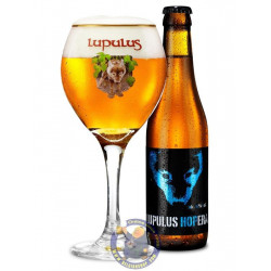 Buy-Achat-Purchase - Les 3 Fourquets Lupulus HopEra 6° -1/3L - Special beers -