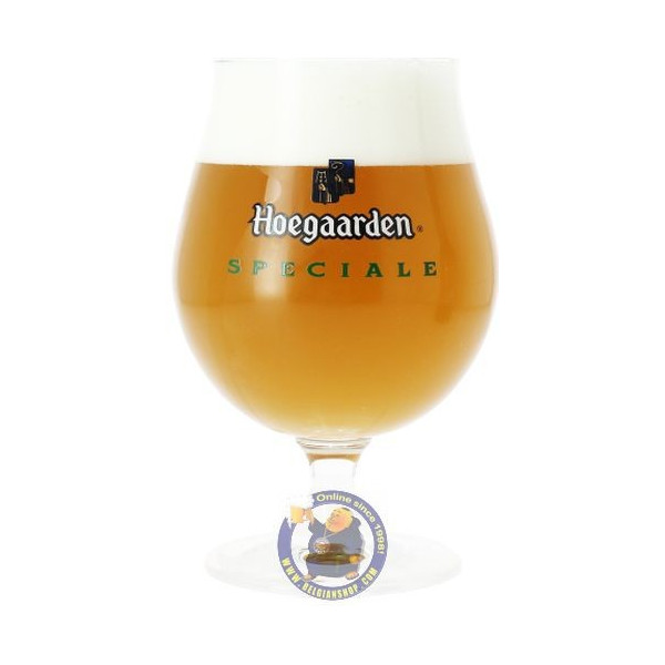 Buy-Achat-Purchase - Hoegaarden Special Glass - Glasses -