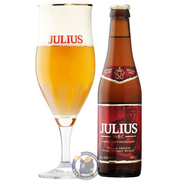 Hoegaarden Julius Blond 8.5° - 1/3L - Special beers -