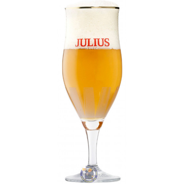 Hoegaarden Julius Glass - Glasses -