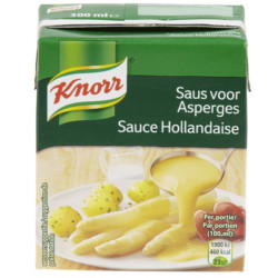 Buy-Achat-Purchase - KNORR Tetra Hollandaise Sauce 300 ml - Sauces - Knorr