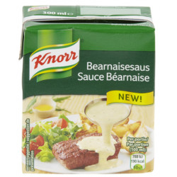 Buy-Achat-Purchase - KNORR Tetra Bearnaise sauce 300 ml - Sauces - Knorr