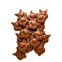 Buy-Achat-Purchase - Langues de Chat White Speculoos - Galler -