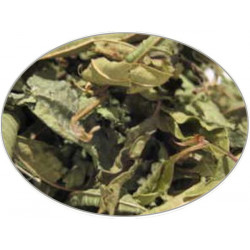 Buy-Achat-Purchase - Lemon Verbena Leaf (Whole) in 1Kg (2.2LB) bag - Brewing Spices -