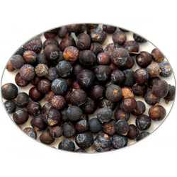 Juniper Berries in 1Kg (2.2LB) bag - Brewing Spices -