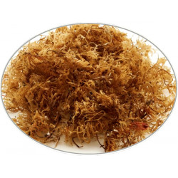 Buy-Achat-Purchase - Irish Moss in 1Kg (2.2LB) bag - Brewing Spices -