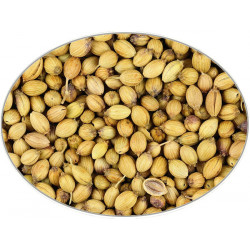 Coriander (Seeds) in 1Kg (2.2LB) bag - Brewing Spices -