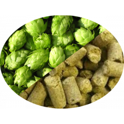 Buy-Achat-Purchase - Hop Warrior (US) in pellets T90 in 5 kg(11LB) bag - Brewing Hops -