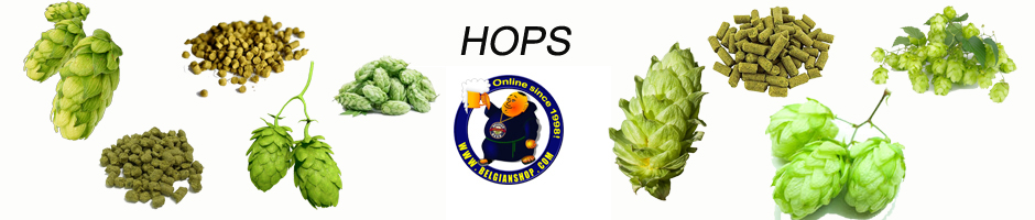 BelgianSHop proposes the best hops